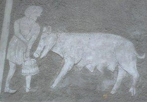 Zvířata ve středověkém městě